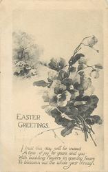 EASTER GREETINGS  pansies