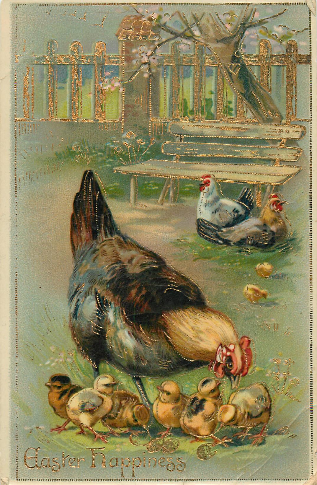 Открытки с курочками, красиво оформить открытку