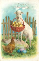 EASTER GREETINGS  hen looks up at sheep carrying basket & four chicks in its mouth, EASTER eggs below