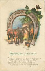 BIRTHDAY GREETINGS,  THE BEST OF GOOD WISHES (on horseshoe)  two horses & dog in front of smithy