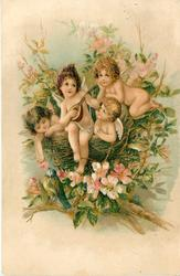 TO MY VALENTINE  MAY LOVE'S SWEET MUSIC MAKE BRIGHT EACH DAY  four cupids in bird's nest, one plays mandolin