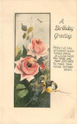 A BIRTHDAY GREETING roses above two tiits below