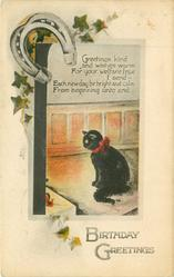 BIRTHDAY GREETINGS  horseshoe above black cat sitting on mat