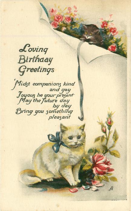 LOVING BIRTHDAY GREETINGS   kittnen above white cat below, roses