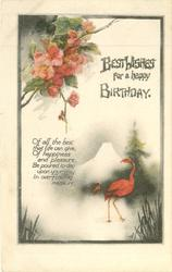 BEST WISHES FOR A HAPPY BIRTHDAY  red japonica above flamingos