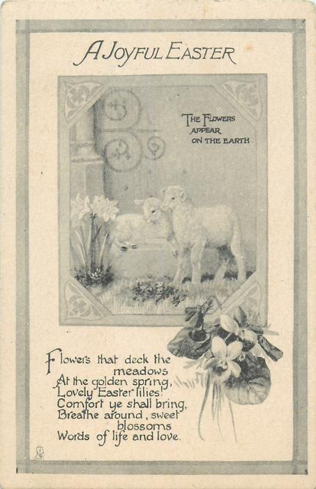 A JOYFUL EASTER  lambs & narcissi, violets