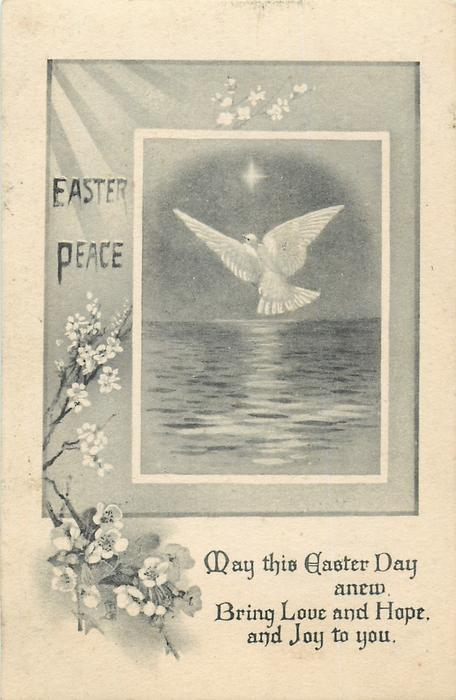 EASTER PEACE  dove flies over sea, blossom left