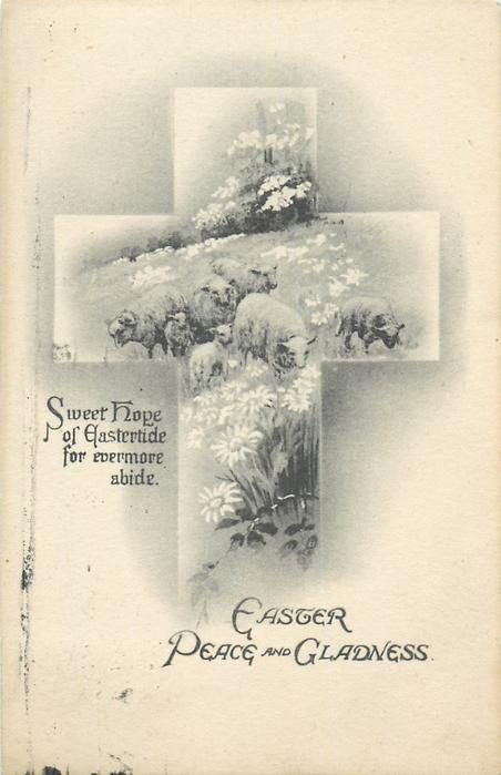 EASTER PEACE AND GLADNESS  sheep in cross insert