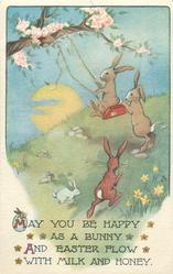 rabbit pushes another on swing, others around