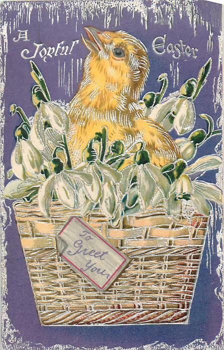 A JOYFUL EASTER  chick in basket with TO GREET YOU on label, snowdrops purple background