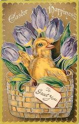 EASTER HAPPINESS  chick in basket with TO GREET YOU on label, violet tulips, light brown  background