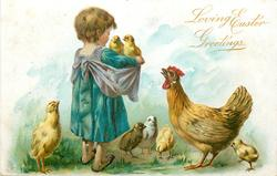 LOVING EASTER GREETINGS  child picks up two chicks, mother hen concerned, other chicks around