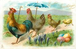EASTER GREETINGS  cockerel leads his family left along path, crocus & coloured eggs front right