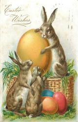 EASTER WISHES  three rabbits on & in front of basket, with colored eggs
