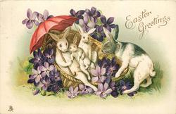 EASTER GREETINGS  rabbits in basket under red parasol, violets around