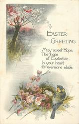 EASTER GREETING  tree & water above left, tit & nest below