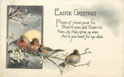 EASTER GREETINGS  four birds on blossom bough left