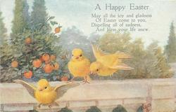 A HAPPY EASTER  yellow finches, wall, oranges