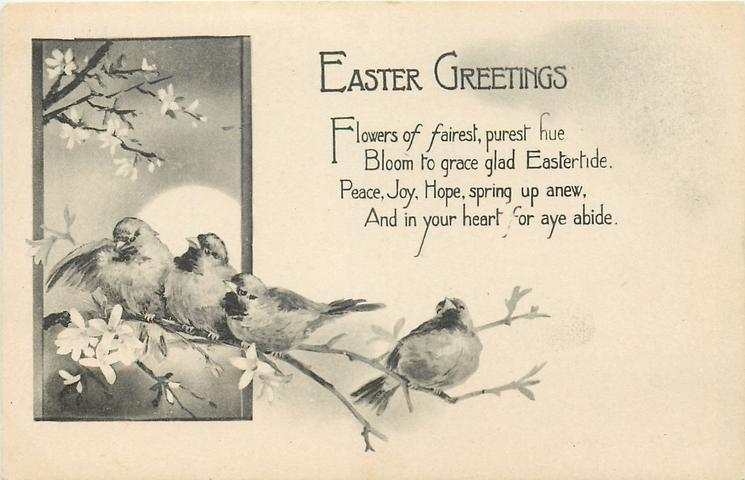 EASTER GREETINGS  inset sparrows, blossom, sun
