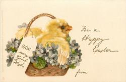 WITH EVERY GOOD WISH on label, FOR A HAPPY EASTER  FROM chick in basket with violets