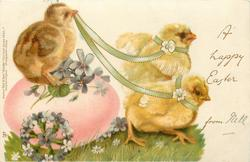 A HAPPY EASTER  FROM chicks pull pink egg as carriage right with another chick on it, violets & forget-me-nots