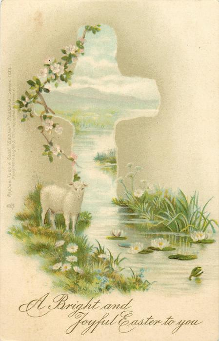 lamb on edge of water, facing front, head up, lily pads with flowers