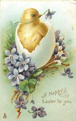A HAPPY EASTER TO YOU  chick in shell surrounded by violets