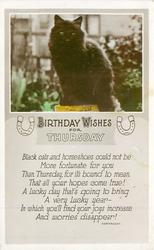 BIRTHDAY WISHES FOR THURSDAY black cat sits on pedestal in garden