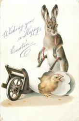 WISHING YOU A HAPPY EASTER  rabbit with wheel barrow and chick breaking out of egg