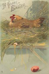 A HAPPY EASTER  hen in nest on shelf, single coloured egg on floor