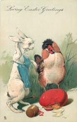 LOVING EASTER GREETINGS  white rabbit wearing blue painters bib, hen looks at red cracked egg