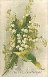 EASTER GREETINGS  bunch of creamy white lilies of the valley