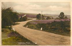 HOLMSLEY PLAIN  road front left