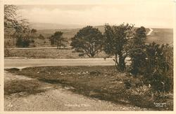 HOLMSLEY PLAIN  road front right