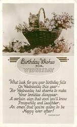 BIRTHDAY WISHES FOR WEDNESDAY kitten in backet of flowers