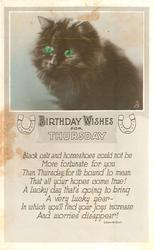 BIRTHDAY WISHES FOR THURSDAY  black cat head & shoulders
