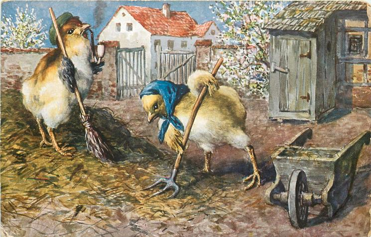two chicks, one smoking pipe, work in farmyard