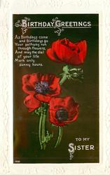 BIRTHDAY GREETINGS TO MY SISTER red poppies