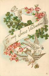 TO MY SWEET VALENTINE  doves carrying clover