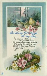 BIRTHDAY GREETINGS TO MY SON birds in front of rural inset above, basket of flowers below