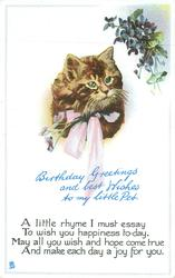 BIRTHDAY GREETINGS AND BEST WISHES TO MY LITTLE PET cat, violets