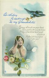 BIRTHDAY GREETINGS TO MY GRANDCHILD blue bird above, child & roses below