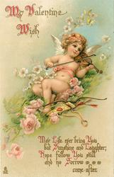 MY VALENTINE WISH  MAY LIFE EVER BRING YOU BUT SUNSHINE AND LAUGHTER; HOPE FOLLOW YOU STILL AND NO SORROW COME AFTER  cupid plays violin, roses