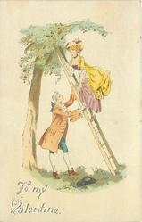 TO MY VALENTINE, man holds ladder for lady at cherry tree