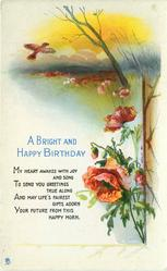 A BRIGHT AND HAPPY BIRTHDAY poppies, meadow, skylark