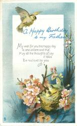A HAPPY BIRTHDAY TO MY FATHER bird above nest & young in blossom