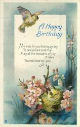 A HAPPY BIRTHDAY bird above nest & young in blossom