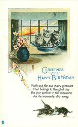 GREETINGS FOR A HAPPY BIRTHDAY kittens in bowl & below, blossom left