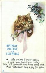 BIRTHDAY GREETINGS AND BEST WISHES  A LITTLE RHYME I MUST ESSAY TO WISH YOU HAPPINESS TO-DAY, MAY ALL YOU WISH AND HOPE/FOR YOU  cats head & violets
