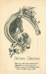 BIRTHDAY GREETINGS horse & hound in horseshoe